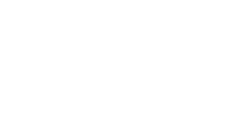 Willow Wealth Management Logo